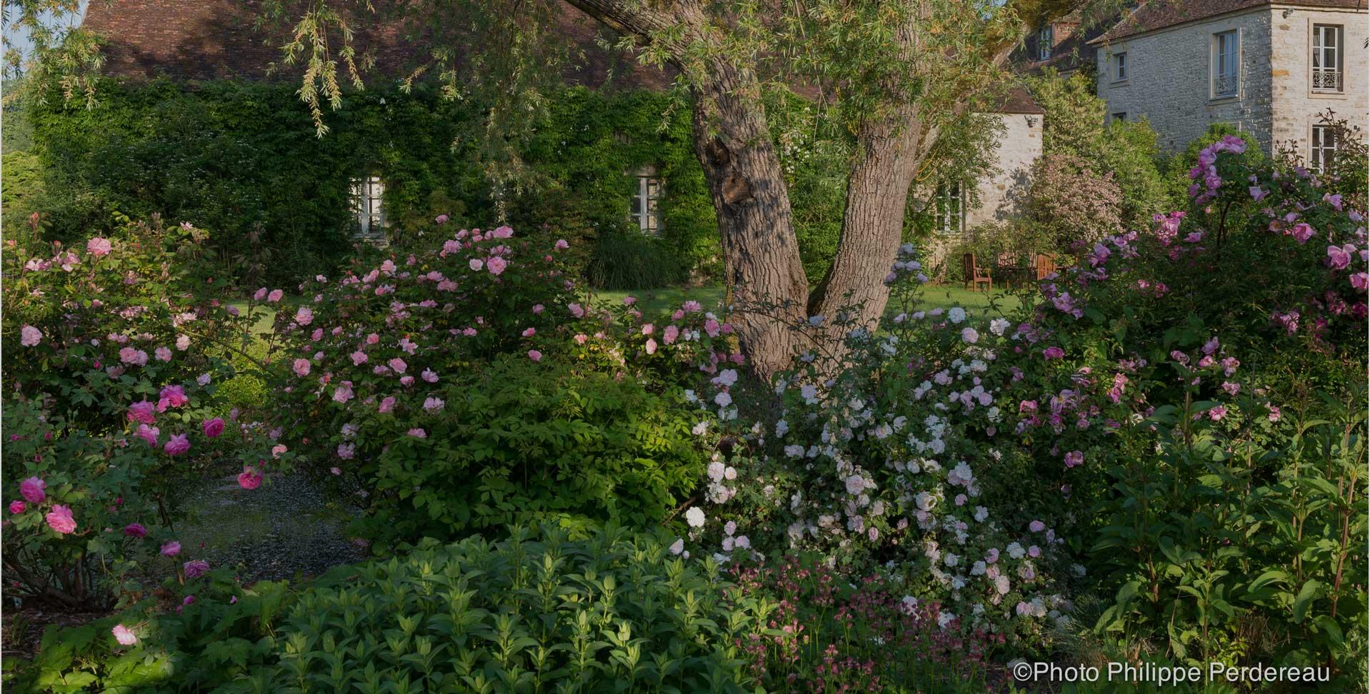 Bienvenue dans les Jardins de Berville